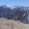 バラの段 大光山 一本杉山