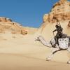 『アサシンクリード オリジンズ』で俺はエジプトの守護者になる