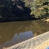 『永泉寺池』静岡県掛川野池群バス釣り完全攻略マップ