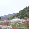 ①長野県 弓の又キャンプ場で平成最後のキャンプ