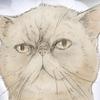 【似顔絵】猫:ささみちゃん【イラスト】