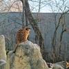 朝霜くるまるミュンヘン動物園【Münchener Tierpark Hellabrunn】