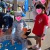 三島『市民すこやかふれあいまつり』に参加しました!