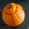 リピート! 柑橘の王様 熊本県産「訳あり デコみかん」9kg買った! くまもと風土