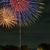 昭和記念公園で行われた立川花火大会の様子