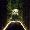 【高知情報】光と闇の供宴!夜の牧野植物園はワンダーランド【中編】