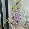 開花が進む🌸
