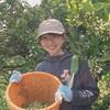 【 学生体験記 】魅力いっぱいな田村での非日常的な農業体験🍊