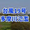 【台風19号】多摩川氾濫、浸水、冠水!被害画像・動画まとめ(二子玉川、武蔵小杉近郊)