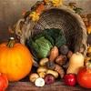 無印良品で見つけた秋の味覚。