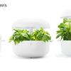 間接照明の機能を果たすデザイン性の高い家庭用植物工場キットが売れ行き好調