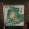 つばきの丘運動公園(浅口市)