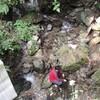 渓流水と家庭排水の水質が同じ