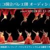 【新着オーディション】チェコ国立バレエ団オーディション