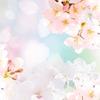 【九星別】4月の過ごし方アドバイス
