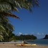 ハワイ旅行で要注意。横断歩道で罰金のNG行動。