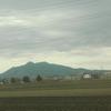 筑波山はくっきりしている。桜は終わりだ。