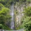 石徹白の大杉と吉田川の踊る水