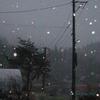 今現在雪が降っています(yahoo編集版)