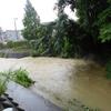 大雨警報、宝塚・天神川のようす