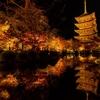 【京都】もの言わぬ東寺の絶景・壮大な五重塔と紅葉ライトアップ