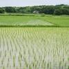 【株式投資】iシェアーズ コモディティインデックス・ファンドの魅力とは?