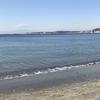 京急【葉山女子旅きっぷ】で海満喫 お得なプチ旅行ならコレ!