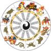 「サルノリ」「ヒバニー」「メッソン」の由来と進化予想【ポケモン剣盾 考察】