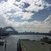 小学生とシドニー旅行:1日目 Circular Quay ⇒Watsons Bay