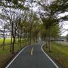 潭雅神緑園道をサイクリング(台中)