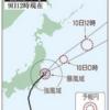 台風15号でサトイモが・・・・(´_`。)
