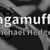 DADGADチューニングで奏でられるソロギター名曲集【Ragamuffin / Michael Hedges】