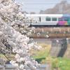 18/03/28、31 中央線 春の花々と絡めていろいろ撮影
