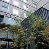 庭のホテル
