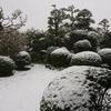 なごり雪、、、