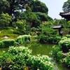 京都 両足院に行ってきました。