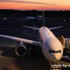 アメリカ行くならデルタ航空