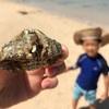 石垣島子連れ旅行 。1歳と5歳が楽しめる海はどこだ!?現地の人から聞いたおススメビーチ
