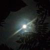 私的夏休み☆温泉と満月と川と♡