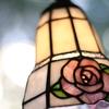 No.267  薔薇~一輪の生命