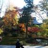 秋の京都(そして出会いの時)