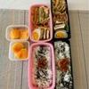 3種の天ぷら〜今日のお弁当〜今日のわんこ〜