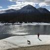 カナダ旅76日目キャンプ3日目 ハイキング