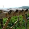 飯能市 燧山~龍崖山 『 竹の望遠鏡 』