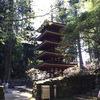 突然の奈良たびに行ったよ。