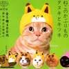 猫のかぶりものシリーズ