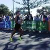 高知から全国、そして海外のマラソンを走ったぼくのオススメ大会10選を紹介