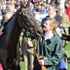 17/03/15 National Hunt Racing - Cheltenham Festival - Neptune Investment Management Novices' Hurdle (G1)