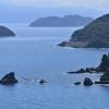 大分県佐賀関(さがのせき)にある「黒が浜」 ここは日本の秘境だった