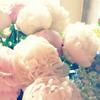 Healing message * 11 あなたの蜜を解き放つ 開花メッセージ